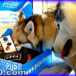 PetBox Review Treat Launcher, Cookies to Share, and More