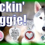 Rockin' Doggie Tag Giveaway | Enter to Win