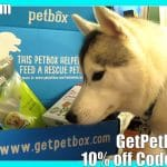 IT LIGHTS UP | Siberian Husky | PetBox Unboxing