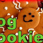 Gingerbread Dog Cookies Christmas Treats! How to make Homemade Dog Treats Recipe