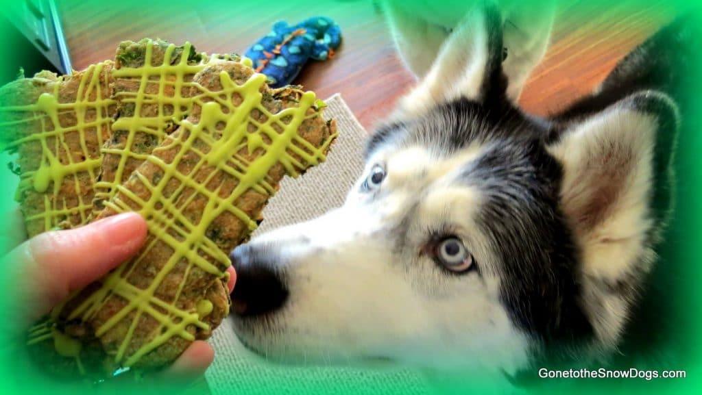 Shamrock Dog Treats