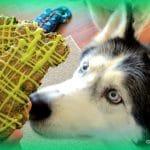 St. Patrick's Day Shamrock DOG TREATS!