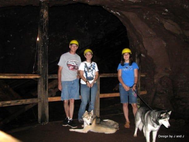 Dog in Delaware Mine