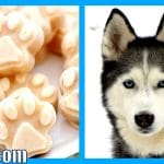 DIY FROSTY PAWS FOR YOUR DOG | Frozen Homemade Dog Treats