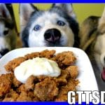 DIY APPLE CRISP FOR DOGS | How to make Homemade Dog Treats