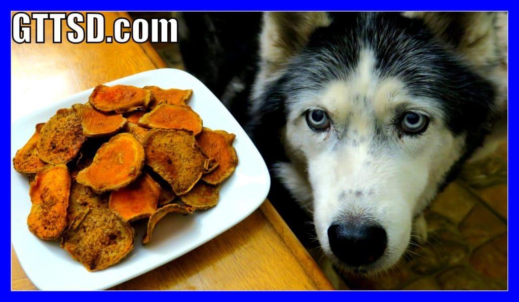 DIY Gluten Free Sweet Potato Dog Treats