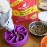 We had a Party! Stella & Chewy's Meal Mixers #KickStartYourKibble  #StellaChewyPawty
