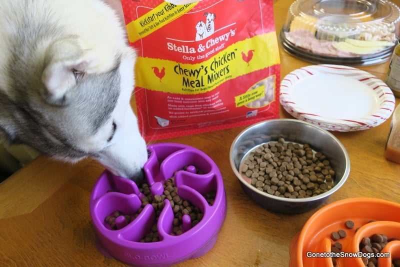 Before Adding Stella & Chewy's Meal Mixers