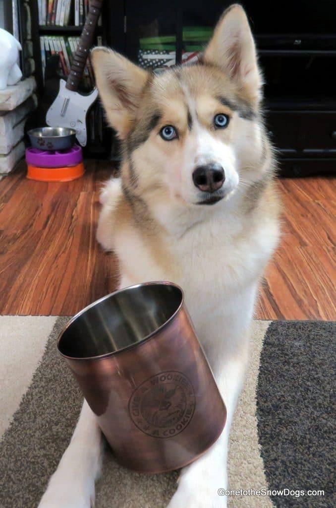 Wookie Treat Jar From Petco
