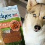 Jumping for Nudges® Dog Treats   #NudgeThemBack   GIVEAWAY