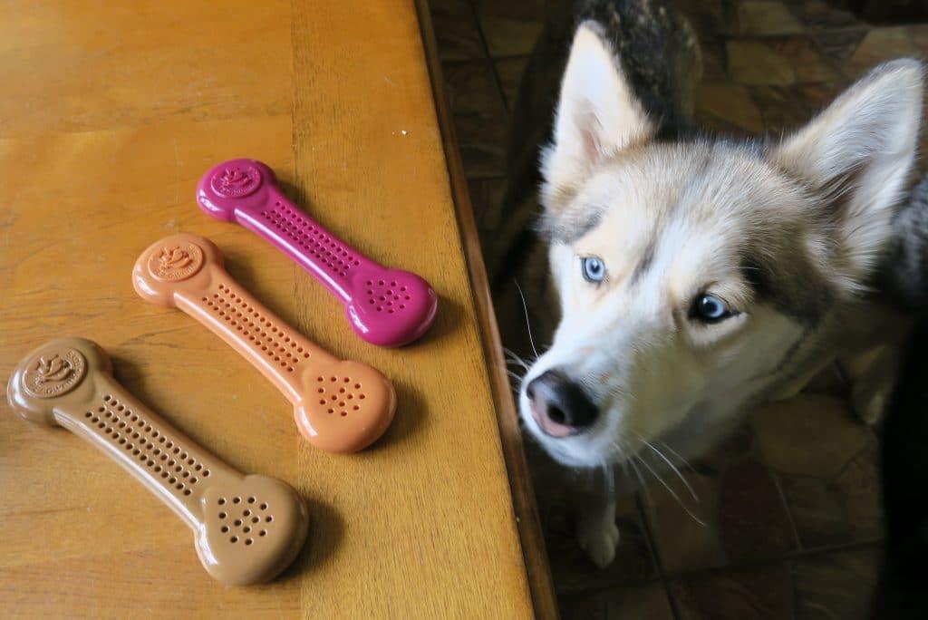 Flavorit Dog Chews