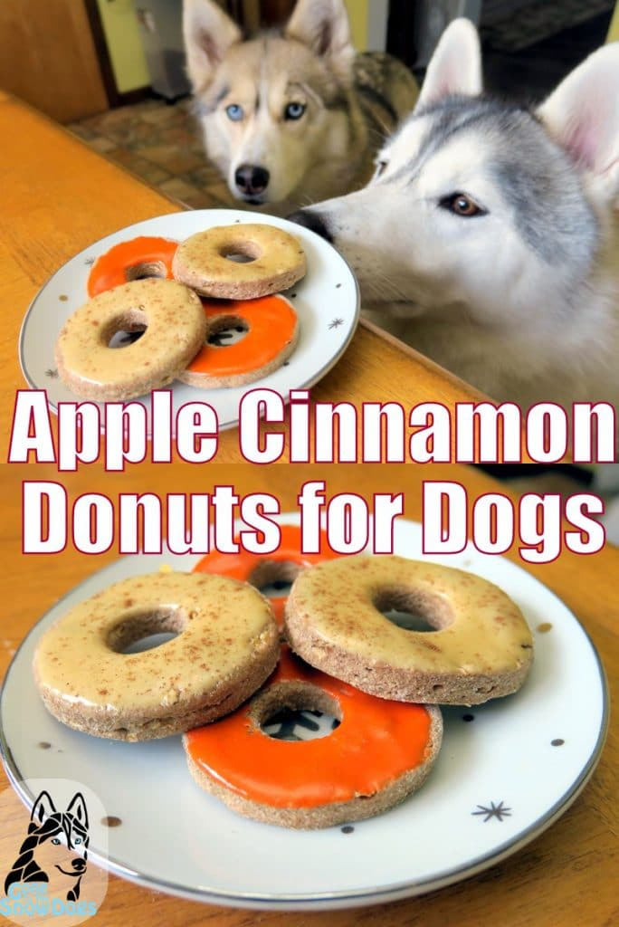DIY Donuts for Dogs