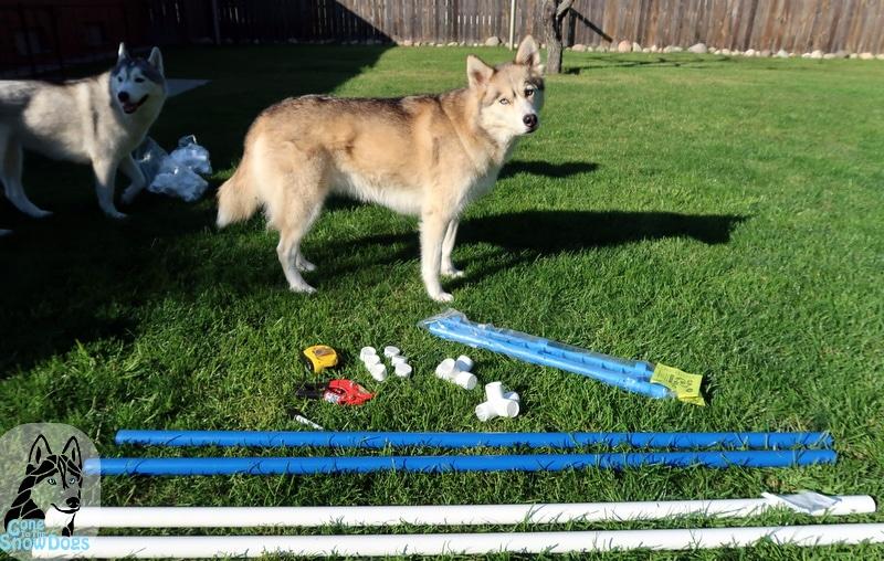 DIY Dog Agility Jumps