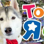 Day 4 $50 ToysRUs Giftcard #12DaysofGiveaways