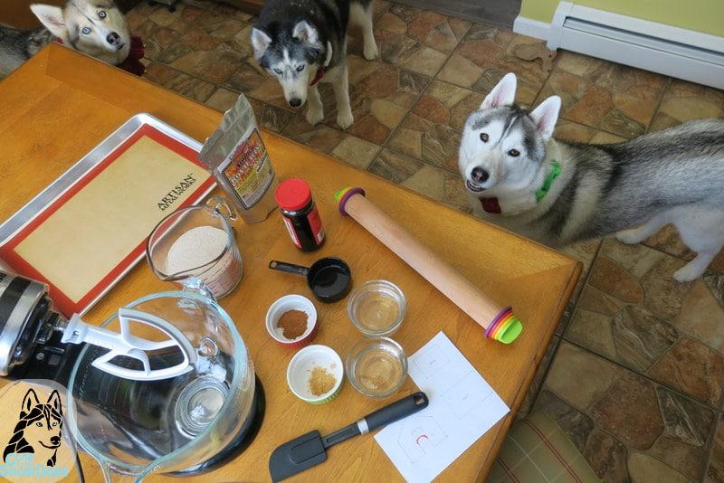 DIY Christmas Dog Treats