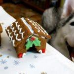 DIY Gingerbread Dog House | DIY Dog Treats