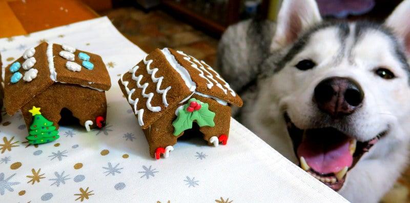 DIY Gingerbread Dog Houses