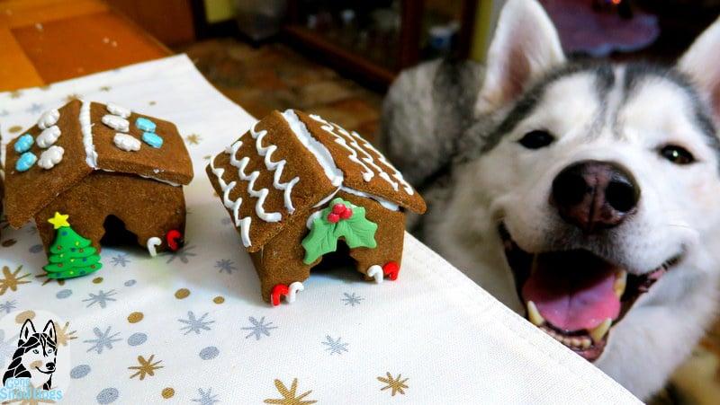 DIY Gingerbread Dog House