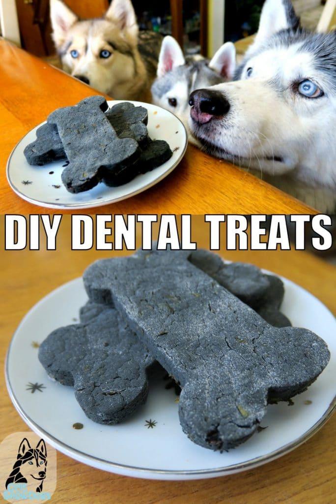 DIY Dental Treats for dogs