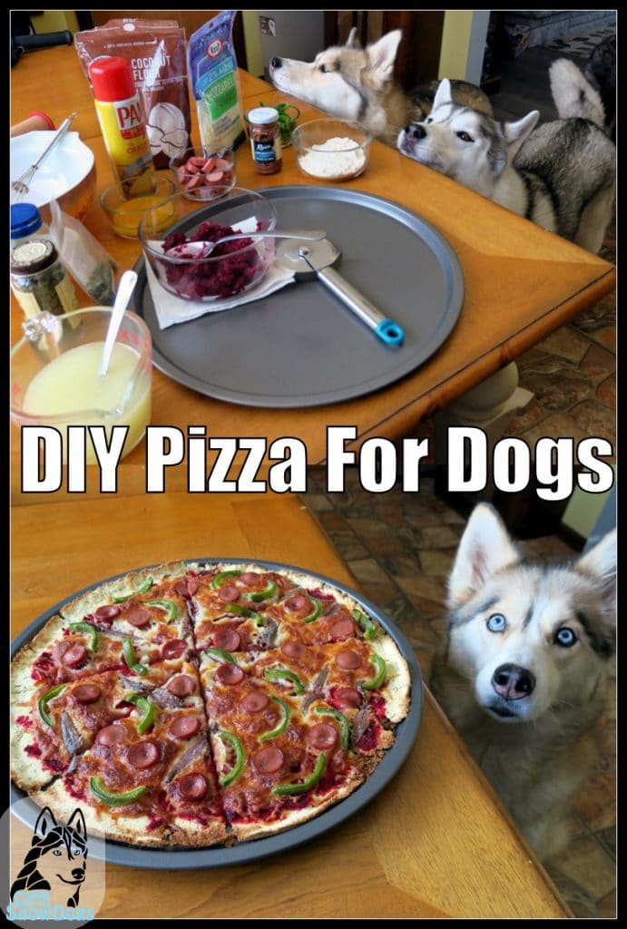 DIY Pizza for Dogs