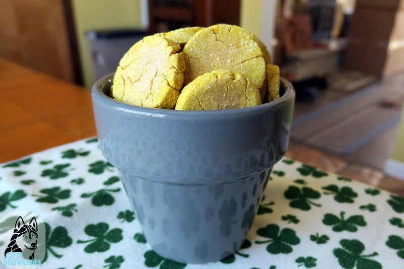 DIY St Patrick's Day Pot of Gold Dog Cookies