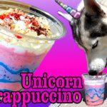 DIY UNICORN FRAPPUCCINO FOR DOGS | DIY Dog Treats