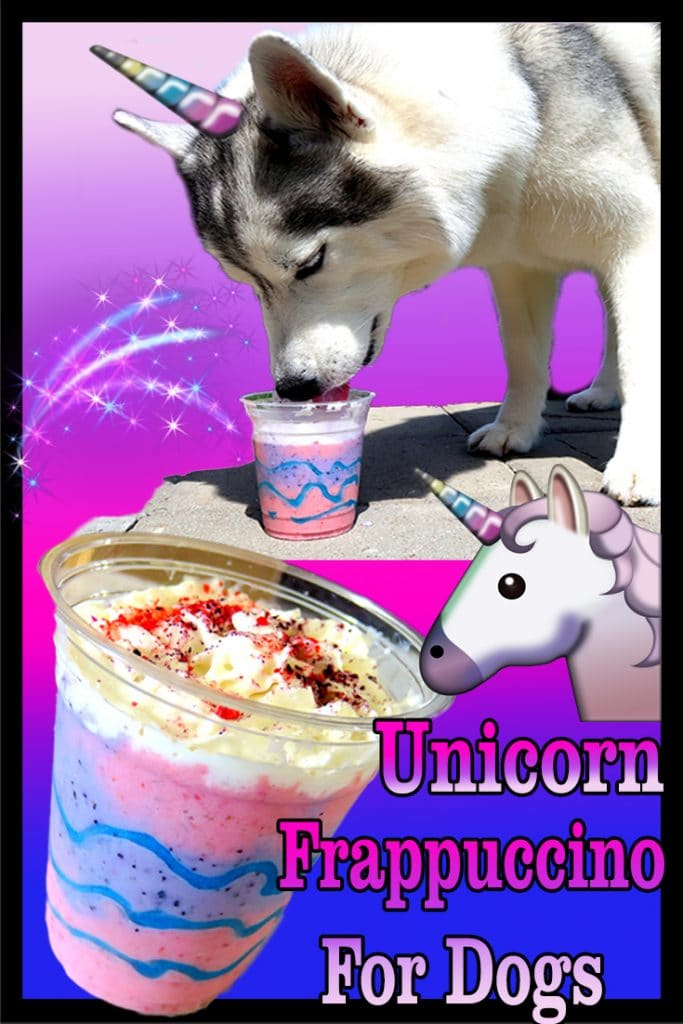 Unicorn Frappuccino for dogs