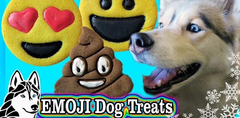 DIy Emoji Dog Cookies
