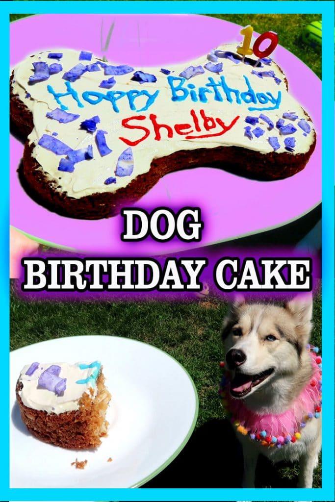 DIY Dog Birthday Cake