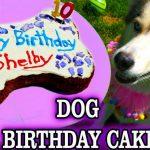 DIY DOG BIRTHDAY CAKE | DIY Dog Treats