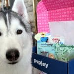 Pupjoy Unboxing and Review – March 2018