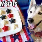 4th of July Gummy Dog Treats Fruit Stars