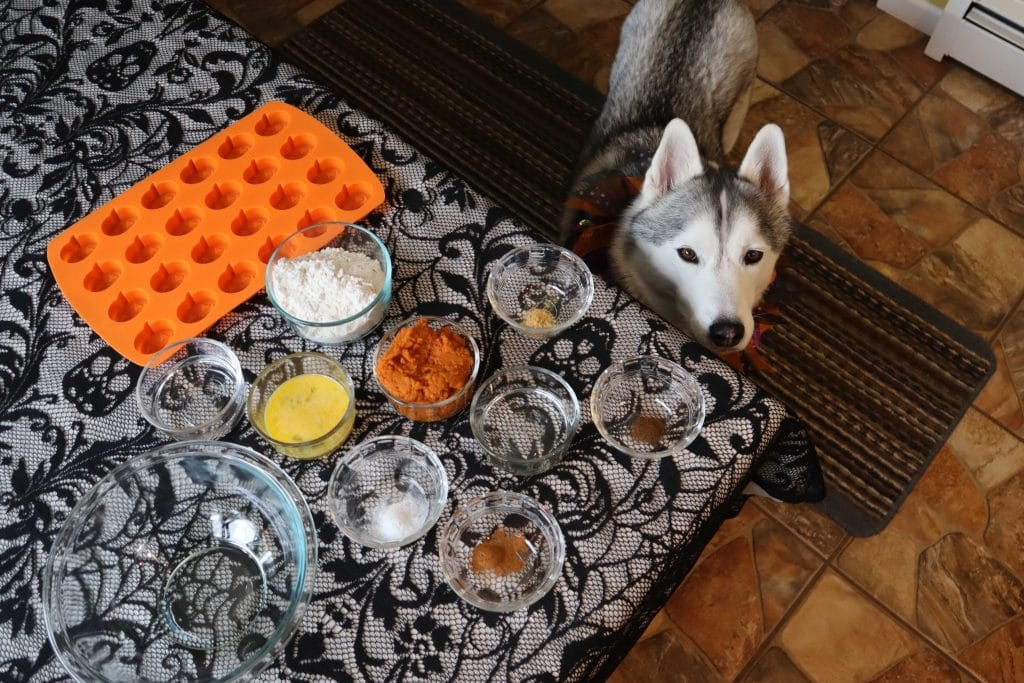 Pumpkin Spice Muffins for Dogs