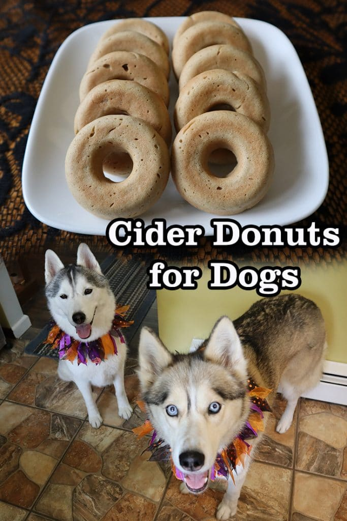 Cider Donuts for Dogs