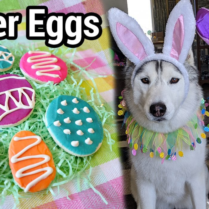 How to Make Easter Eggs for Dogs   DIY Dog Treats