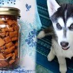 Puppy Training Treats | Homemade Dog Treats