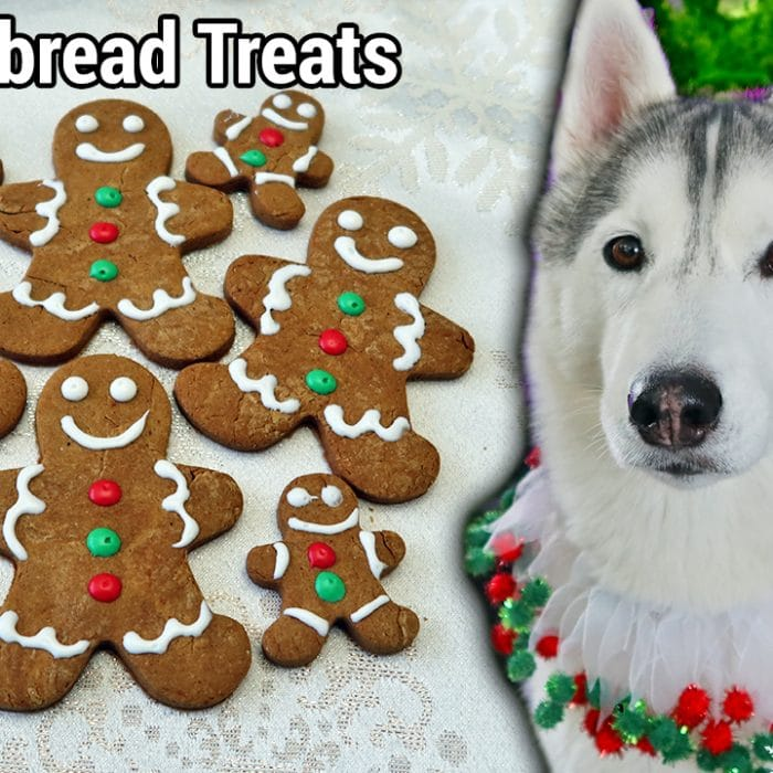 Gingerbread Cookies for Dogs Recipe